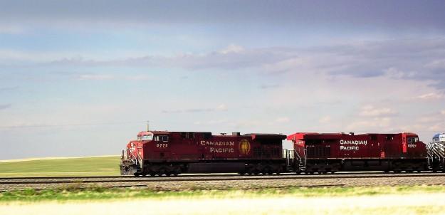 DSCF2619.JPG